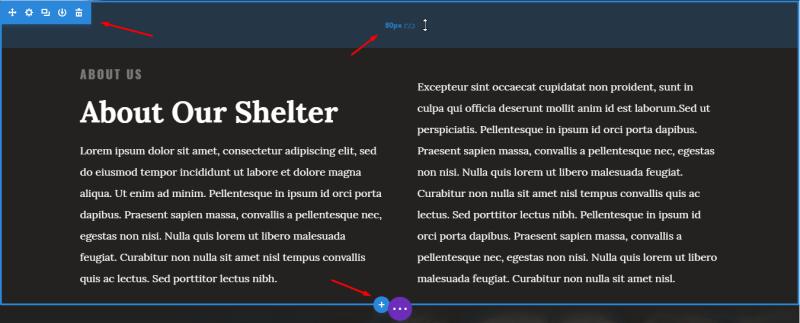 Plantilla Divi para WordPress