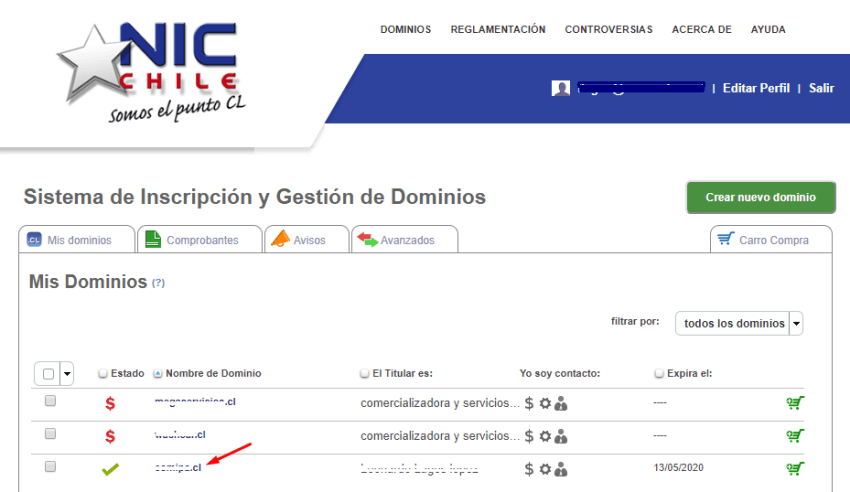 delegar dominio CL